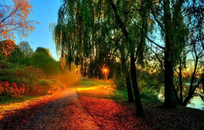 Фото прикол  про захід сонця та осінь