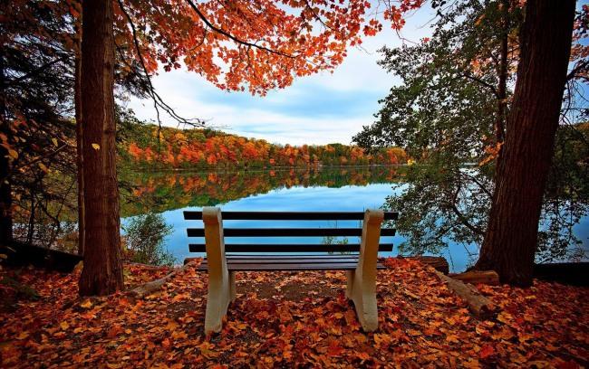 Фото прикол  про осінь