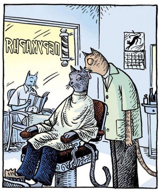 Малюнок  про котів та перукаря